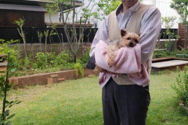 【愛犬の最期】お別れの予兆、看取り方、愛犬にしてあげられること